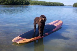 Three Brothers Boards On a SUP