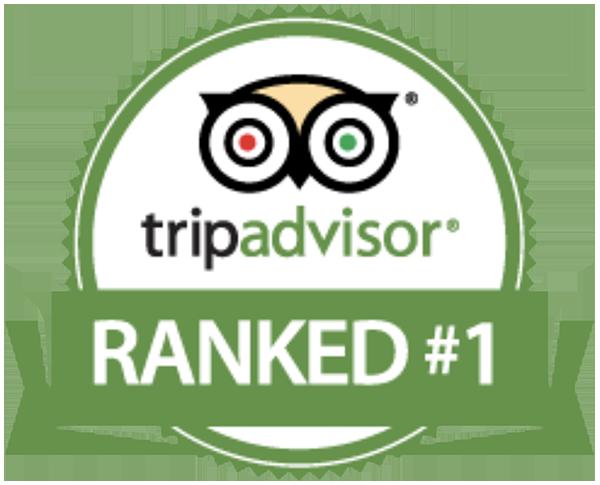 Voted #1 on Trip Advisor